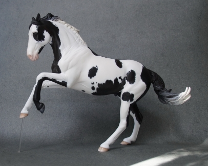 Eclipse resin, scale 1:10, painted to a black and white pinto in 2016